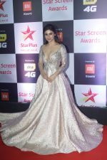 Mouni Roy at Red Carpet of Star Screen Awards 2018 on 16th Dec 2018