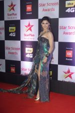 Urvashi Rautela at Red Carpet of Star Screen Awards 2018 on 16th Dec 2018 (24)_5c1894f5791df.JPG