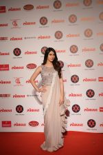 Warina Hussain at Lokmat Most Stylish Awards in The Leela hotel andheri on 19th Dec 2018 (31)_5c1b4a51edcb7.JPG