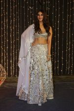 Vaani Kapoor at Priyanka Chopra & Nick Jonas wedding reception in Taj Lands End bandra on 20th Dec 2018 (205)_5c1ca2d8c13ed.JPG
