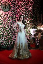 Ameesha Patel at Kapil Sharma_s wedding reception in jw marriott Sahar on 25th Dec 2018 (83)_5c2c54c785f7f.JPG