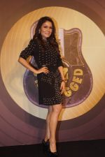at The launch of Royal Stag Barrel Select MTV Unplugged on 16th Jan 2019 (23)_5c402e46a3b47.JPG