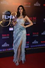 Diana Penty at Flimfare Glamour And Style Awards on 13th Feb 2019 (4)_5c6524bd40c58.jpg