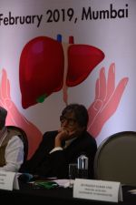 Amitabh Bachchan at the launch of National action plan on combating viral hepatitis in India on 25th Feb 2019 (16)_5c763d1e3ab23.jpg
