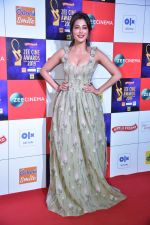 Chitrangada Singh at Zee cine awards red carpet on 19th March 2019 (10)_5c91e809f2a3f.jpg