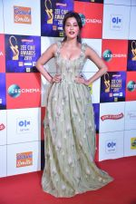 Chitrangada Singh at Zee cine awards red carpet on 19th March 2019 (6)_5c91e80347ac2.jpg