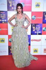 Chitrangada Singh at Zee cine awards red carpet on 19th March 2019 (9)_5c91e807d564e.jpg