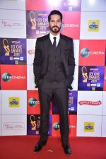 Dino Morea at Zee cine awards red carpet on 19th March 2019