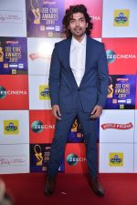 Gurmeet Choudhary at Zee cine awards red carpet on 19th March 2019 (240)_5c91e88a4792f.jpg