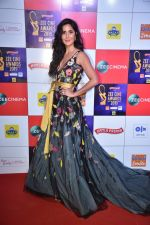 Katrina Kaif at Zee cine awards red carpet on 19th March 2019 (233)_5c91e96f1f18a.jpg