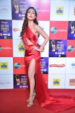 Malaika Arora at Zee cine awards red carpet on 19th March 2019