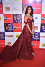 Pooja Hegde at Zee cine awards red carpet on 19th March 2019 (93)_5c91ea1caf262.jpg