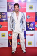 Varun Dhawan at Zee cine awards red carpet on 19th March 2019