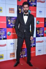 Vicky Kaushal at Zee cine awards red carpet on 19th March 2019 (37)_5c91e3f582efd.jpg