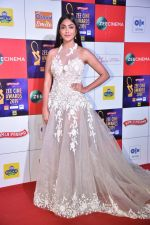 at Zee cine awards red carpet on 19th March 2019 (193)_5c91e831bf83d.jpg