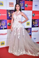 at Zee cine awards red carpet on 19th March 2019 (196)_5c91e83655b36.jpg