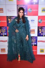 at Zee cine awards red carpet on 19th March 2019 (246)_5c91e8393bd21.jpg
