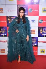 at Zee cine awards red carpet on 19th March 2019 (247)_5c91e83aaf21c.jpg