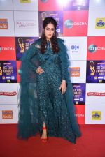 at Zee cine awards red carpet on 19th March 2019 (248)_5c91e83c9bbdf.jpg