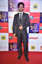 at Zee cine awards red carpet on 19th March 2019