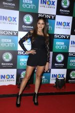 at the Screening of Sony BBC_s series Dynasties in worli  on 12th June 2019 (54)_5d02597368732.jpg