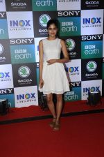 at the Screening of Sony BBC_s series Dynasties in worli  on 12th June 2019 (91)_5d025a381fc1e.jpg