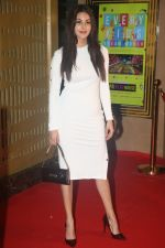 Amyra Dastur at the Screening of film Judgmental Hai Kya in pvr icon, andheri on 25th July 2019 (19)_5d3aab46090b7.JPG