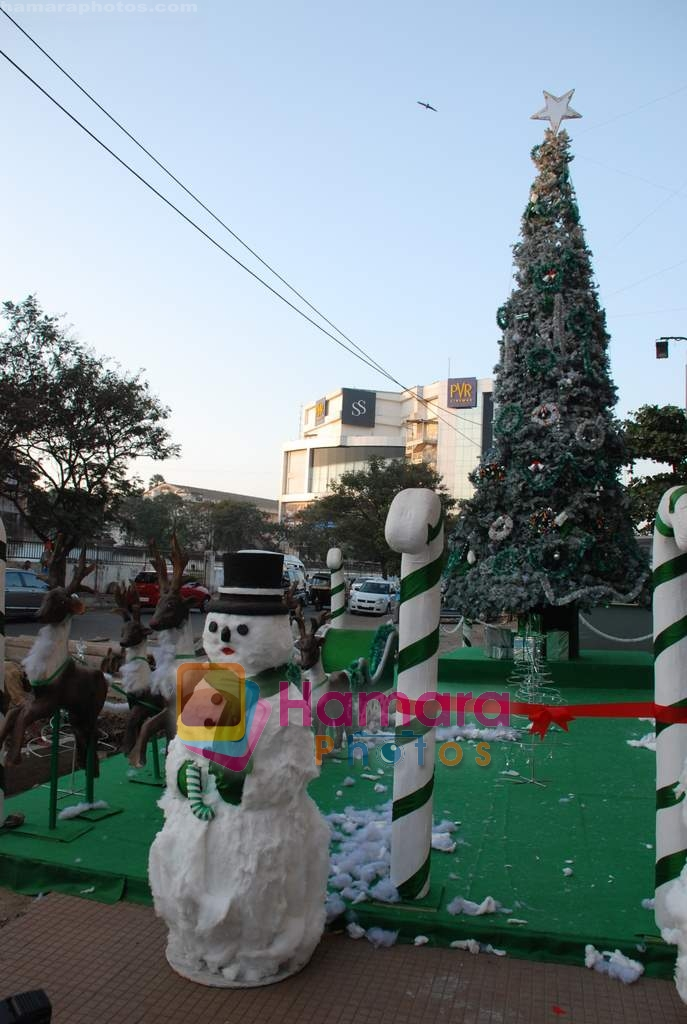 at biggest Christmas tree in Croma, Juhu on 25th December 2008