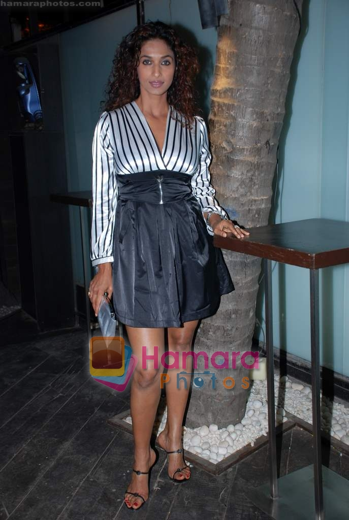 Sandhya Shetty at Vie Lounge New Year's pre-bash on 29th December 2008
