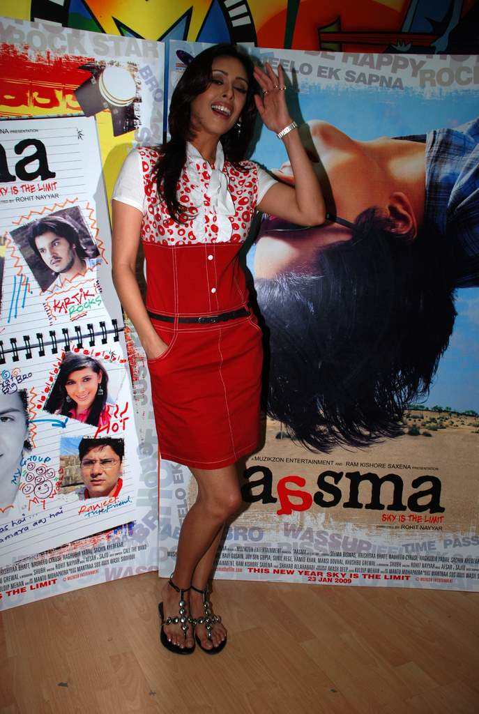 Hrishita Bhatt at the Audio release of Aasma - The Sky Is The Limit in Planet M on 30th December 2008