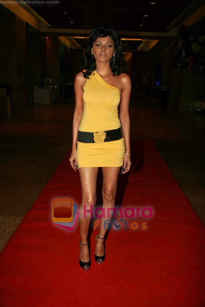 Sherlyn Chopra at Viren Shah's Apex Awards in Grand Hyatt on 21st Dec 2009