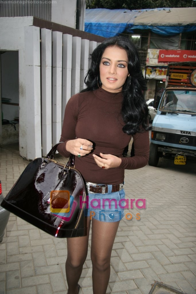 Celina Jaitley unveils the annual PETA calendar in Bandra, Mumbai on 29th Dec 2009