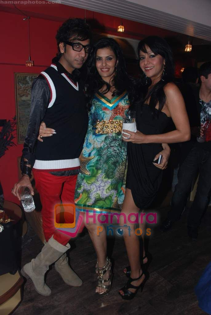 at Painter Soketu Parikh's glam bash in Juhu on 26th Dec 2010