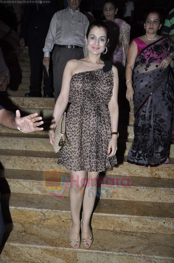 Amisha Patel on day 2 of IIJW 2011 in Grand Hyatt on 1st Aug 2011