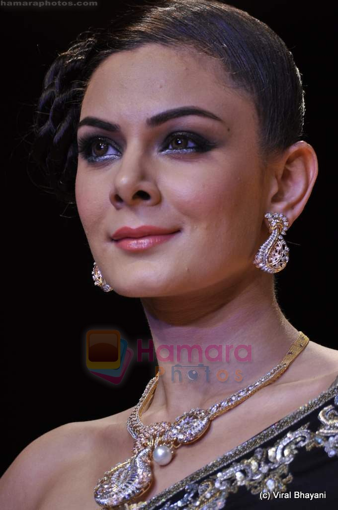 Model walks the ramp for Scintillating Jewellery show at IIJW 2011 Day 2 in Grand Hyatt on 1st Aug 2011