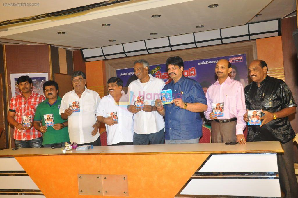 Swami Satyananda Movie Audio Launch on 3rd November 2011