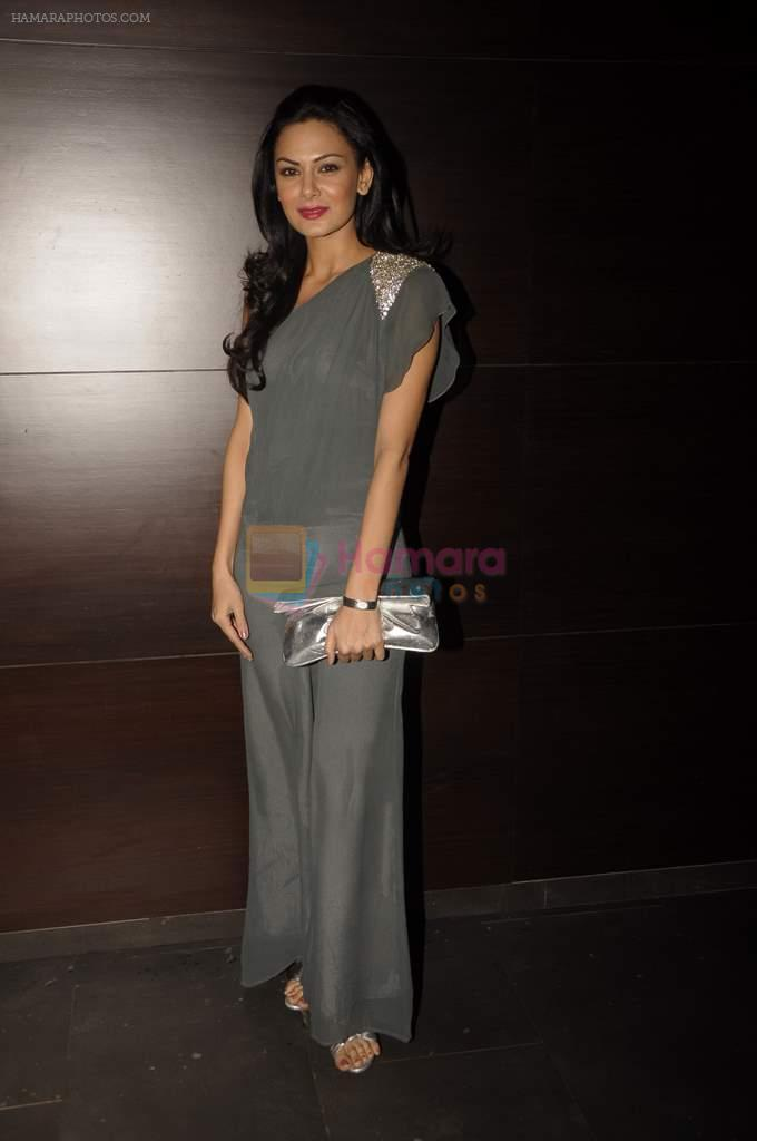 Aanchal Kumar at Baroke lounge launch in South Mumbai on 24th Dec 2011