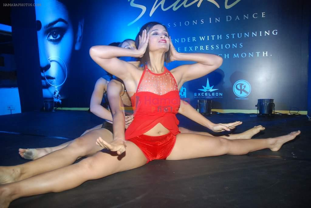 at Zee's Dance India Dance bash by Shakti Mohan in Andheri, Mumbai on 29th Dec 2011