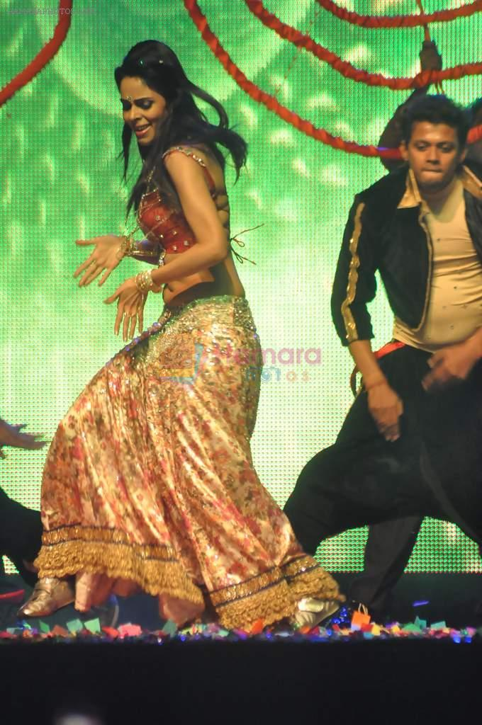 Mallika Sherawat at Tulip Star for New Year's Eve on 31st Dec 2011