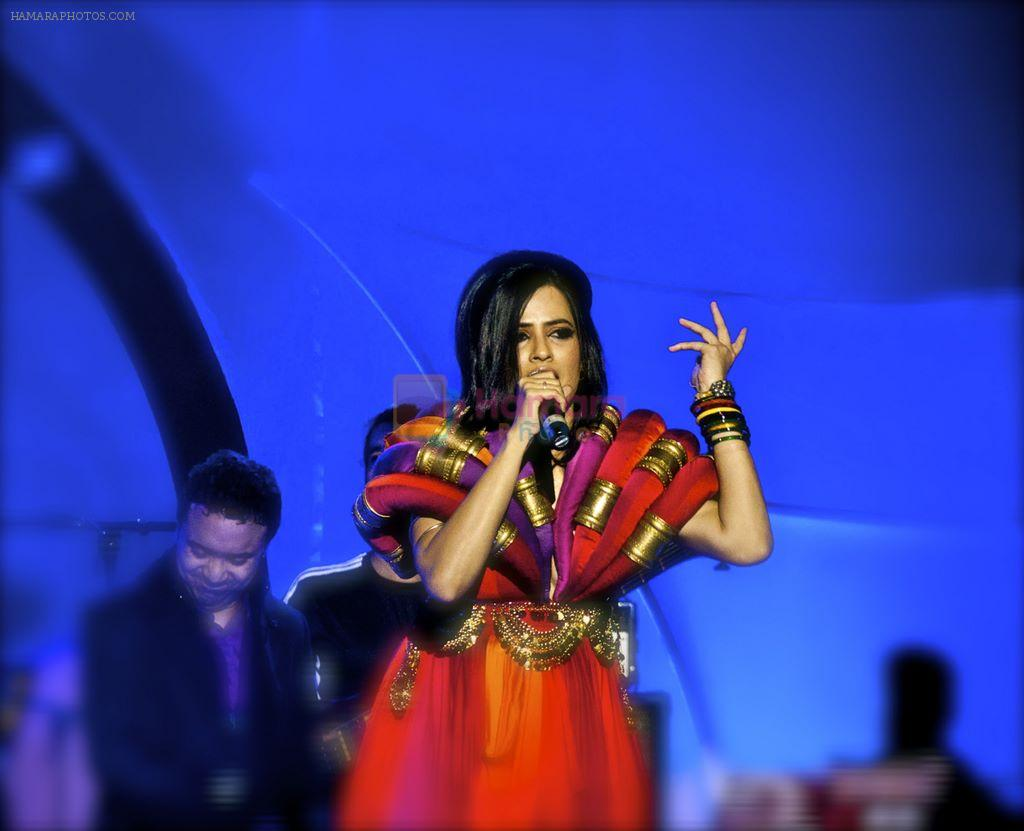 Sona Mohapatra Performs in Delhi For New Years 2012 on 4th Jan 2012