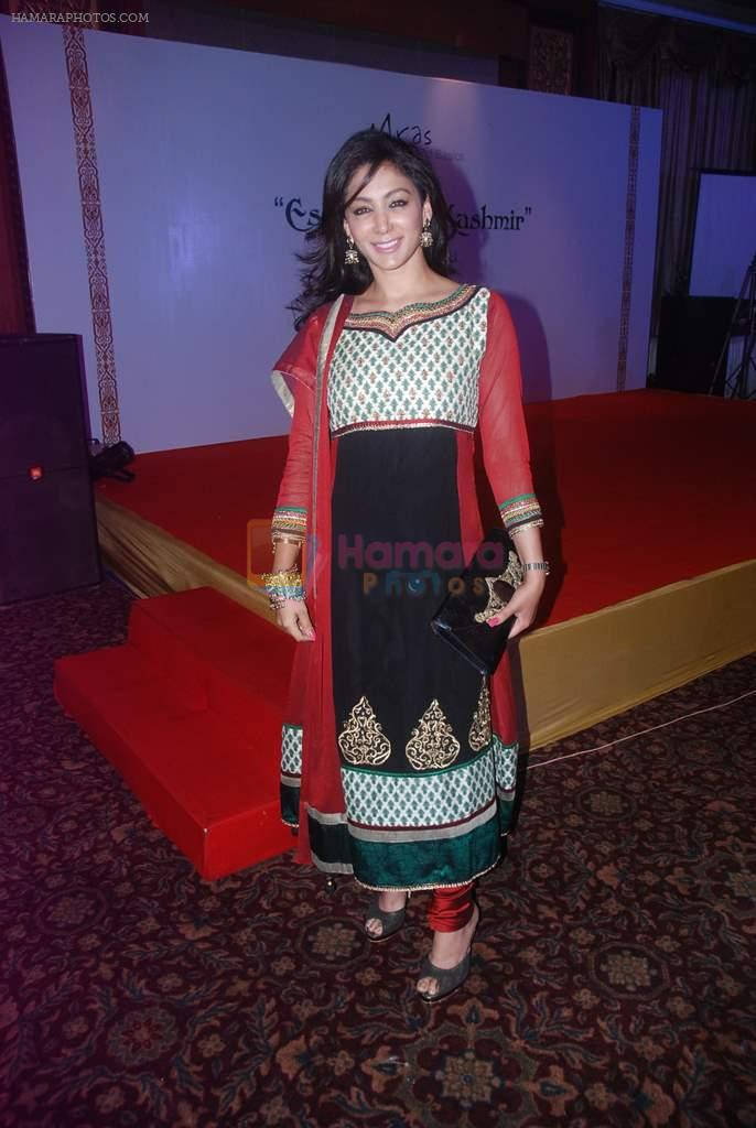at Essence of Kashmir fashion showcase in Sea Princess, Mumbai on 17th March 2012