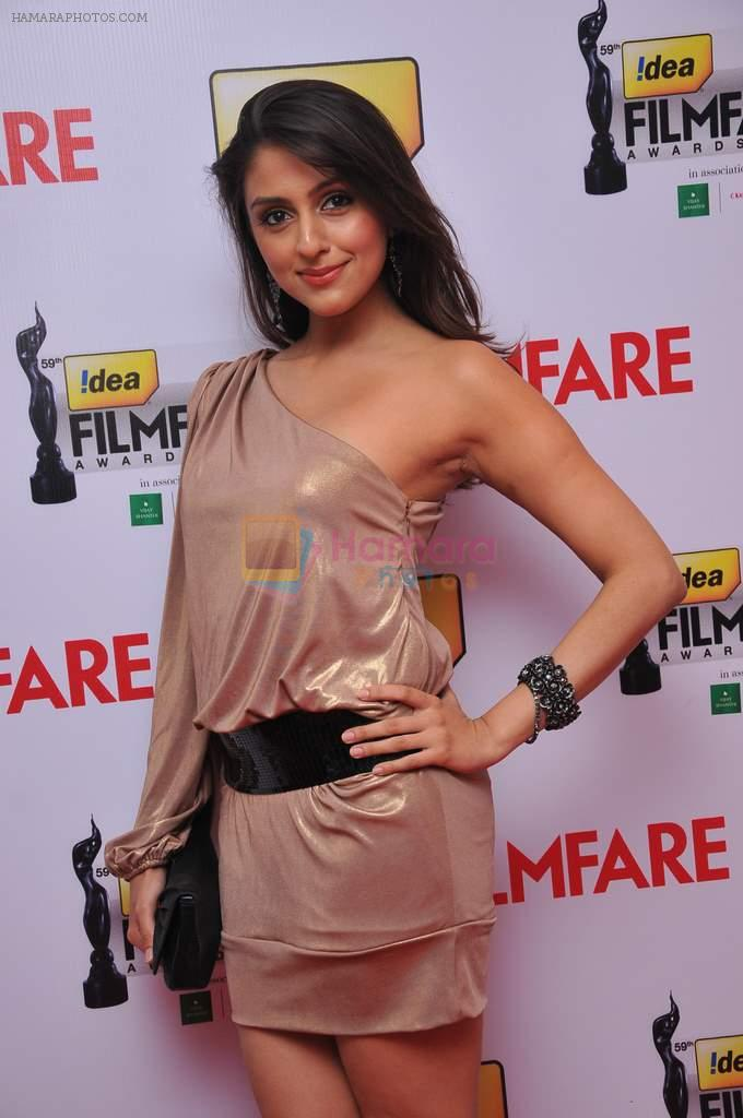 Aarti Chabbria at the Red Carpet of _59th !dea Filmfare Awards 2011_