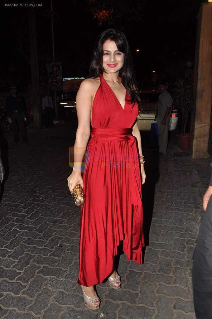 Amisha Patel at Anu and Sunny Dewan's bash in Mumbai on 24th Dec 2012,1