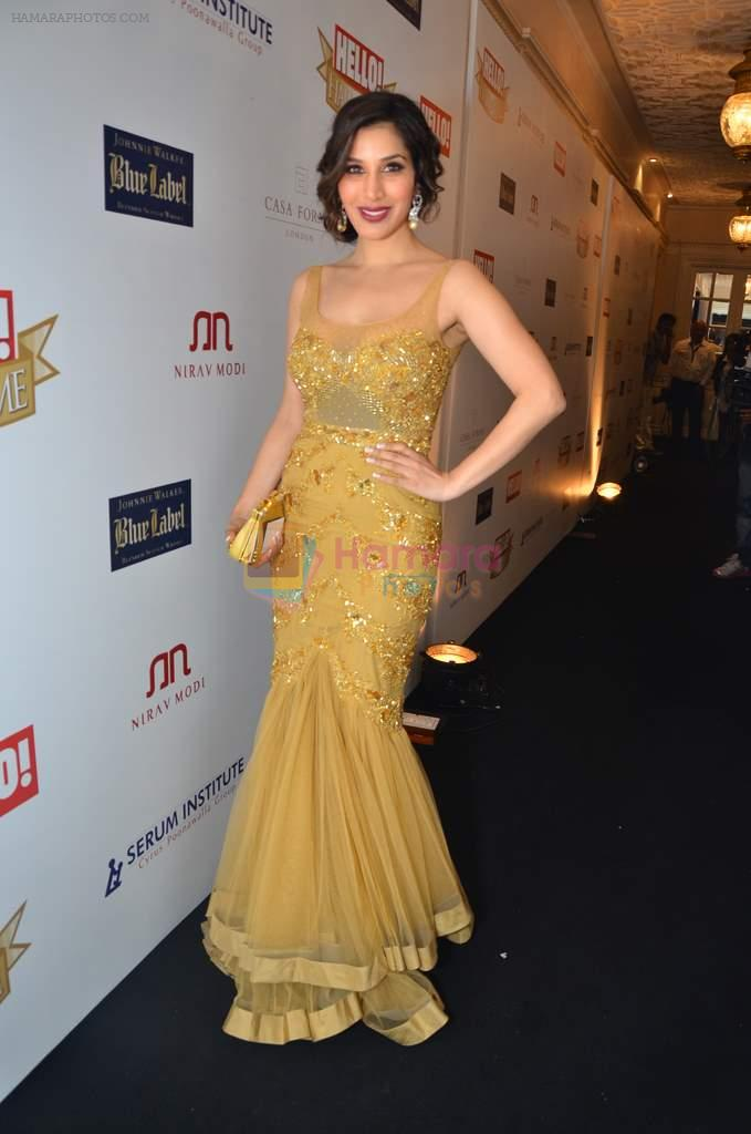 Sophie Chaudhary at red carpet of Hello Hall of Fame Awards in Mumbai on 27th Dec 2012