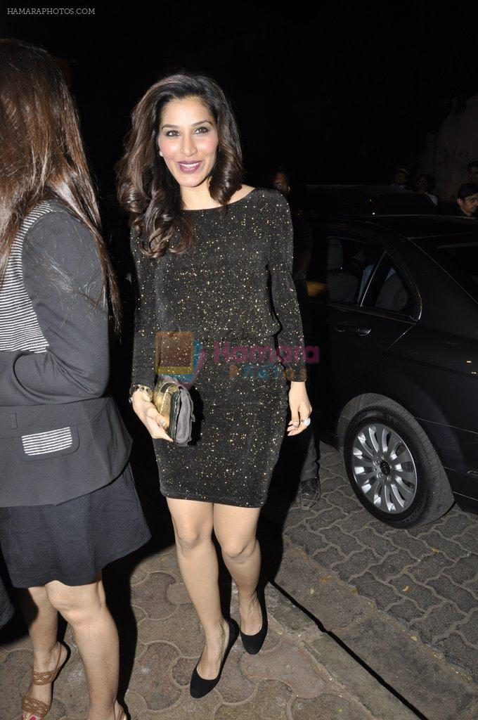 Sophie Chaudhary at Bunty Walia's wedding reception bash in Olive on 28th Dec 2012