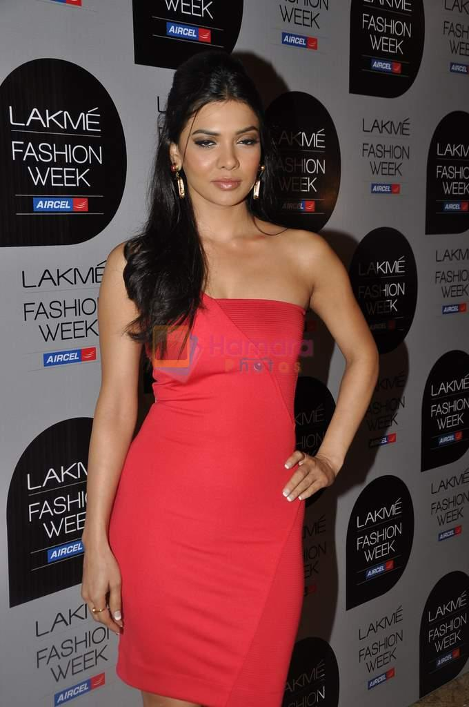 at Manish Malhotra Show at Lakme Fashion Week 2013 Day 1 in Grand Hyatt, Mumbai on 22nd March 2013