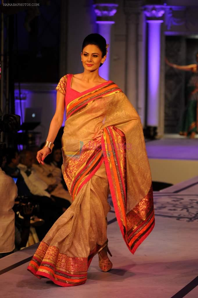 Anchal Kumar in Bangalore for a fashion show on 23rd July 2013