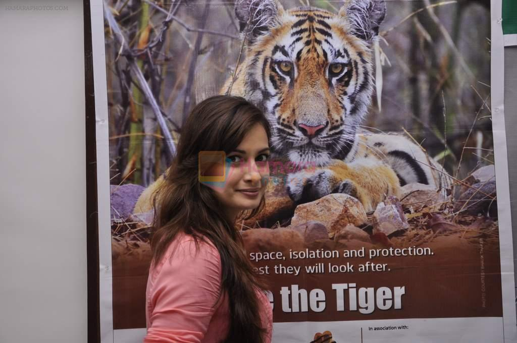 Dia Mirza at Save The Tiger campaign in Press Club, Mumbai on 26th July 2013
