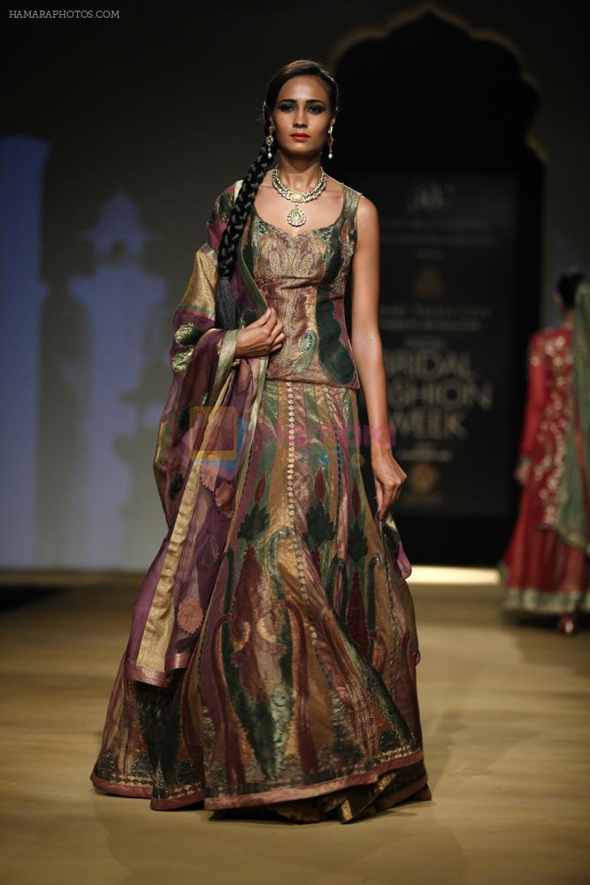 Model walks for designer Ashima Leena in Delhi on 26th July 2013