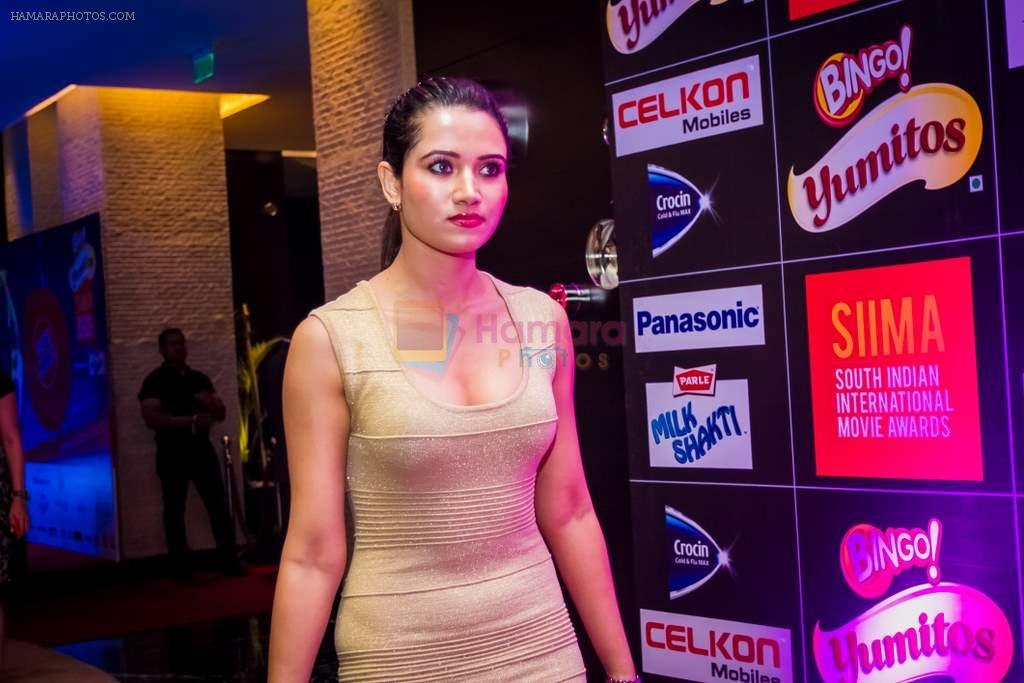 5th South Indian International Movie Awards